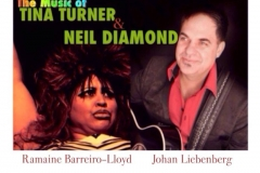 Neil Diamond and Tina Turner